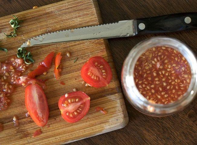 Cum colectezi si pastrezi corect semintele de rosii