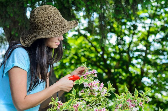 Creeaza-ti o gradina speciala, din care sa iti umpli casa de flori