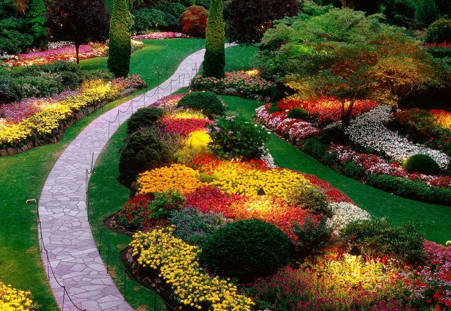 Cum sa creezi o gradina frumoasa, practica, care sa aiba mai multe functii