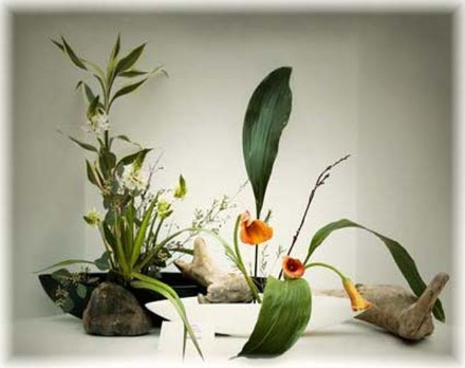 Arta florala japoneza, un nou trend in designul gradinilor