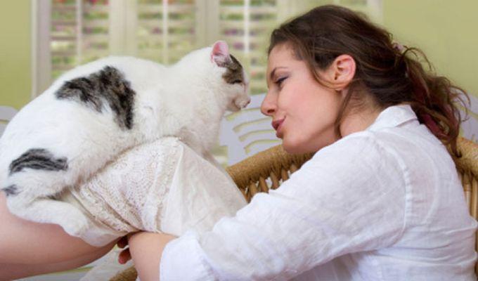 Pisicile traiesc pe langa casa omului de peste 5.000 de ani