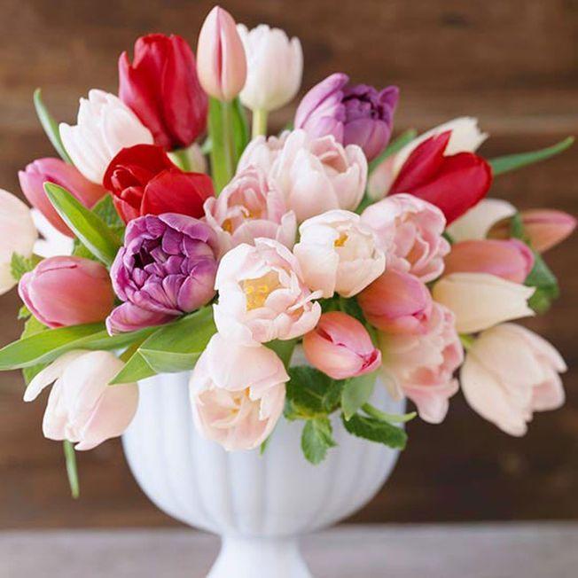 5 flori romantice perfecet pentru Valentine's Day