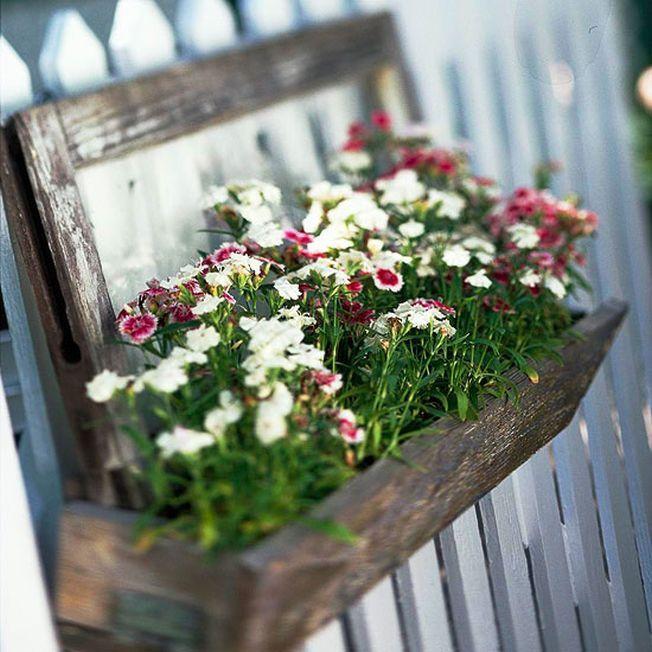 Infrumuseteaza peisajul de primavara al gradinii cu ghivece de flori viu colorate