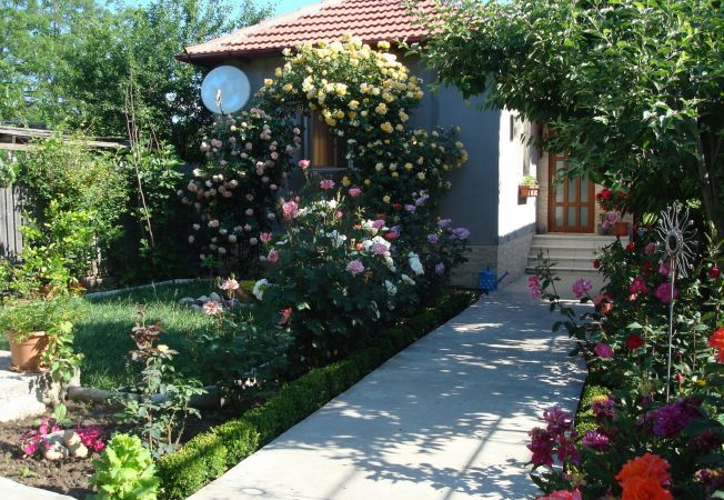 Cum sa iti protejezi gradina de bolile fungice
