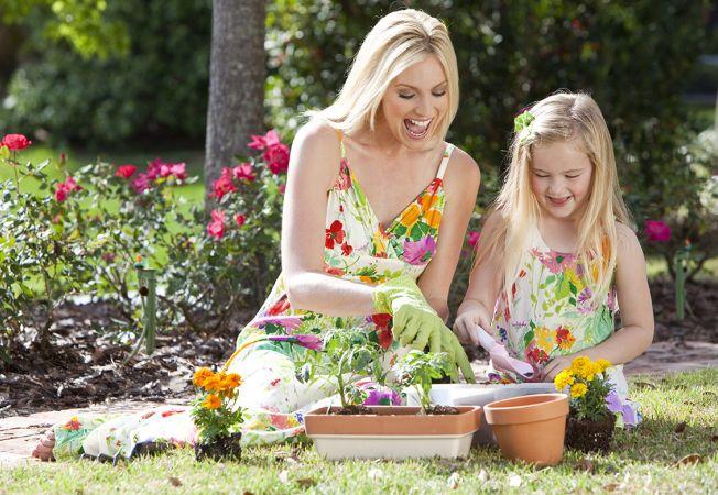4 moduri prin care sa inmultesti florile preferate din gradina