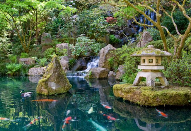 Gradina japoneza din Portland: cinci gradini exotice in una singura!