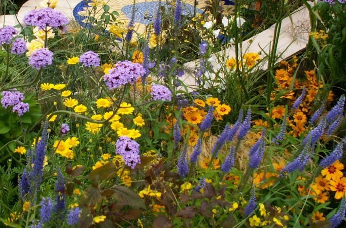 "Cum sa iti ""pictezi"" gradina in nuante tari. Iata 5 plante perene in culori puternice!"