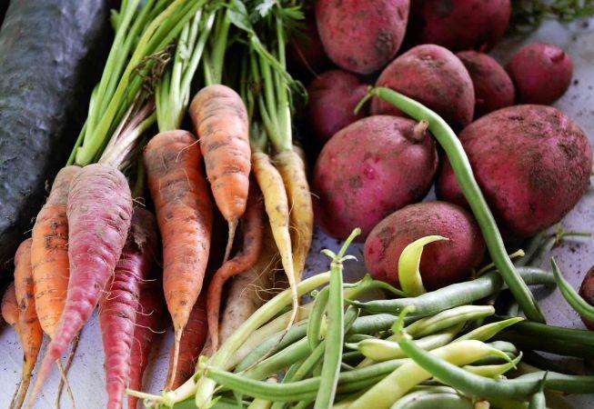 Cum sa pastrezi corect legumele recoltate din gradina ta