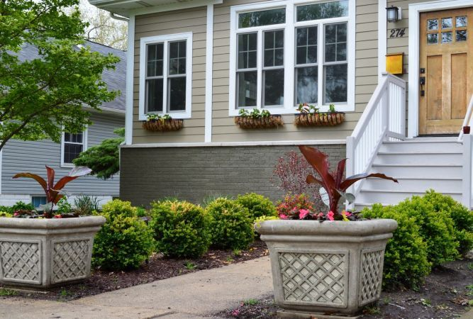 6 sfaturi excelente pentru amenajarile verzi de la intrarea in casa