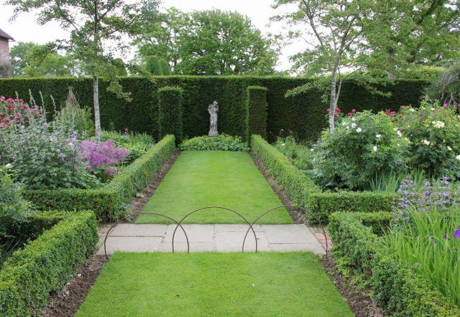 6 pasi de urmat pentru plantarea gardului viu in gradina ta