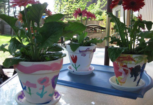 5 secrete ale udarii solului care te vor ajuta sa iti ingrijesti corect florile din ghivece