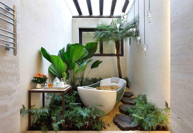 4 plante perfecte pentru baie