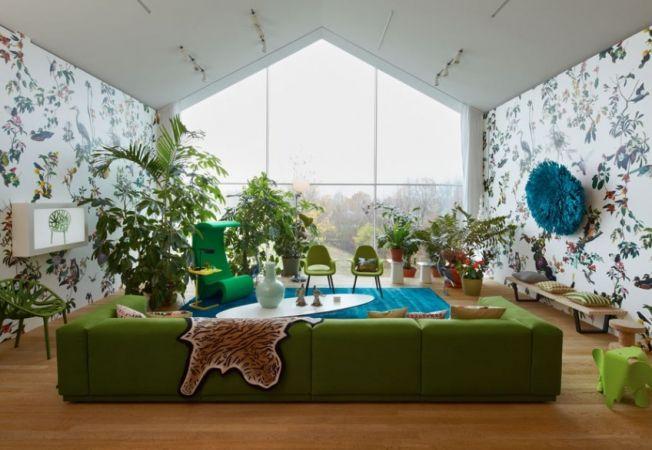 4 idei originale de a crea un decor exotic in casa cu ajutorul plantelor