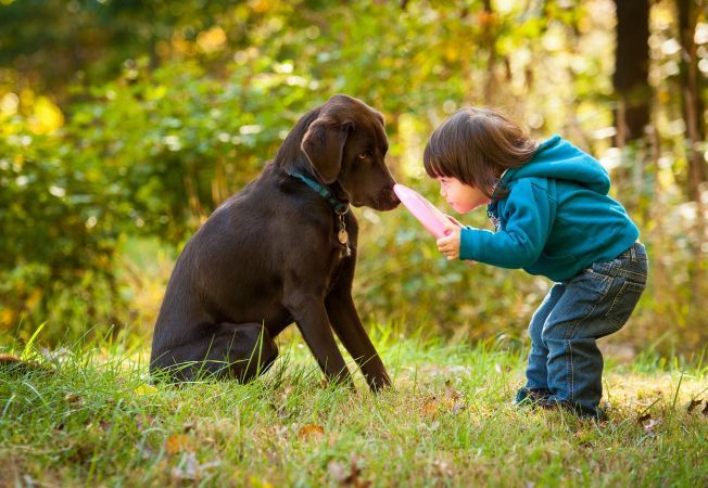Cum vindeci un copil de frica de animalele de companie