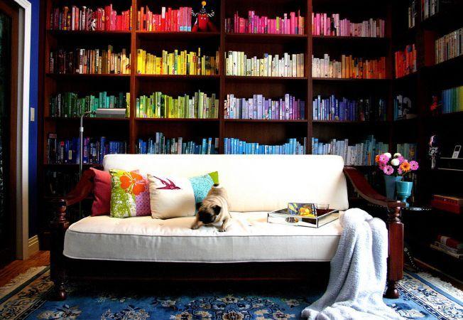 5 motive sa iti asezi cartile in biblioteca pe culori