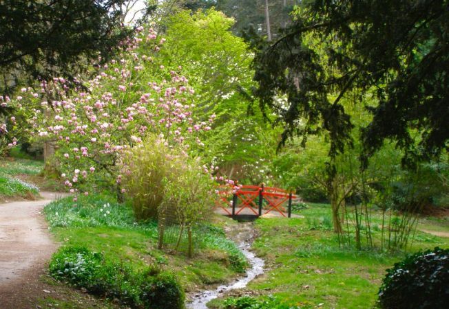 Parcul dendrologic Batsford, o oaza de vegetatie asiatica in mijlocul Marii Britanii