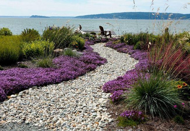 Ce plante sa cultivi daca ai o gradina la malul marii
