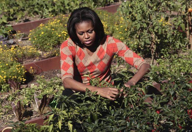 5 idei de gradinarit pe care le poti imprumuta de la Michelle Obama