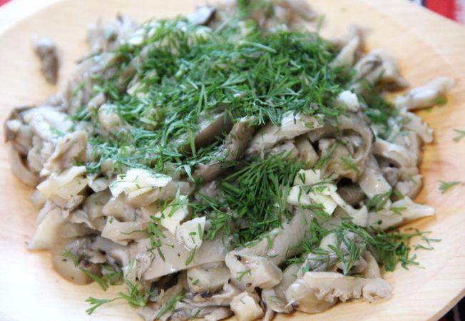 ciuperci Pleurotus