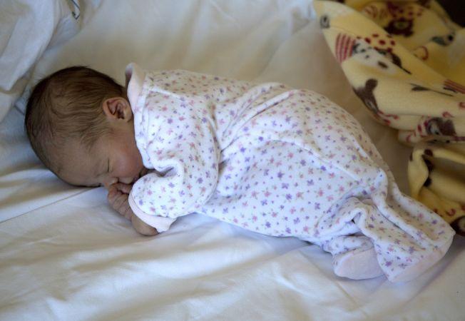 new born Hepta