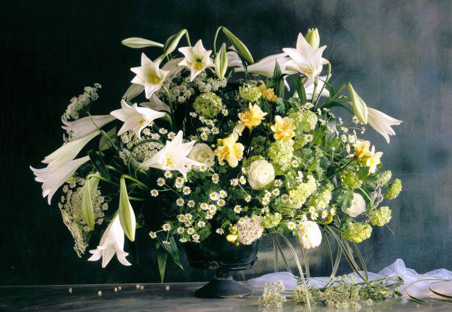 hepta flori
