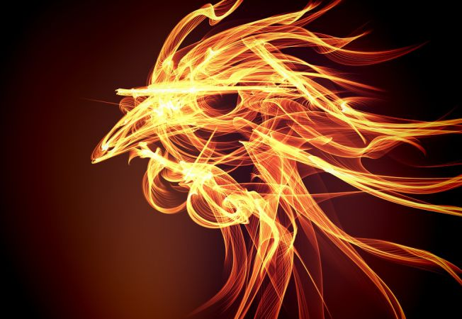 Cocosul de Foc