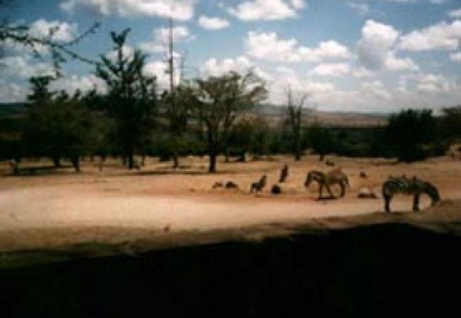 Maralal Kenya