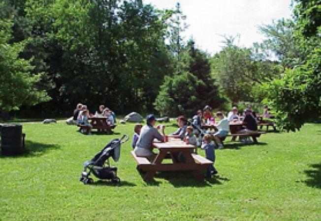 zona picnic