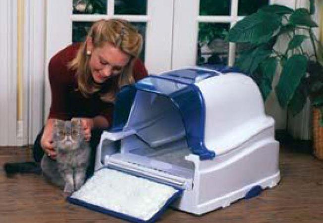 litiera pisicii