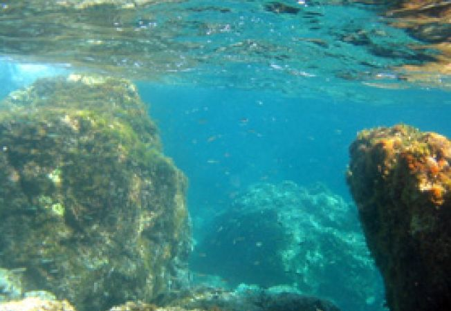 Insula Kalymnos, Grecia