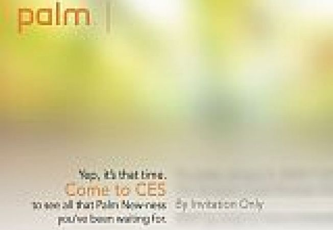 Nova Palm