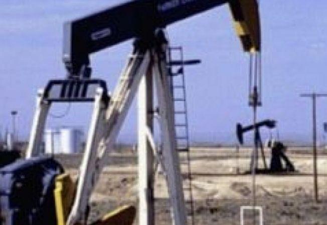 491282 0811 sonda petrol