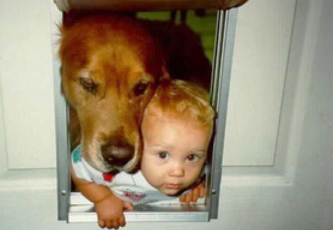 cainii si copii in varsta de 2 ani