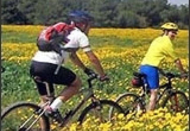 bicicleta turism