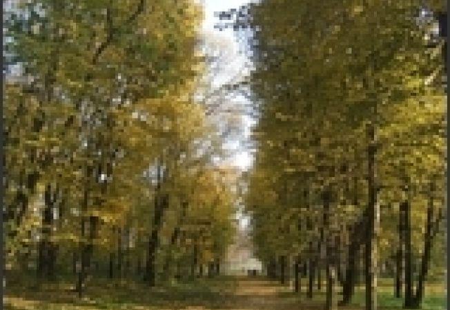 Parc Mogosoaia