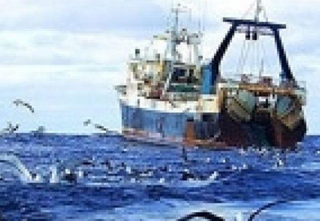pescuit ocean