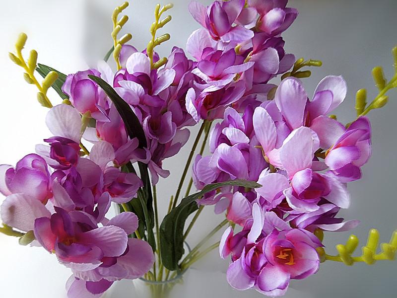 Ce flori sa oferi de 8 Martie femeilor dragi din viata ta