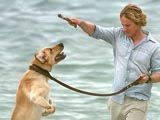 Marley and Me - cine nu are caine, sa-si ia