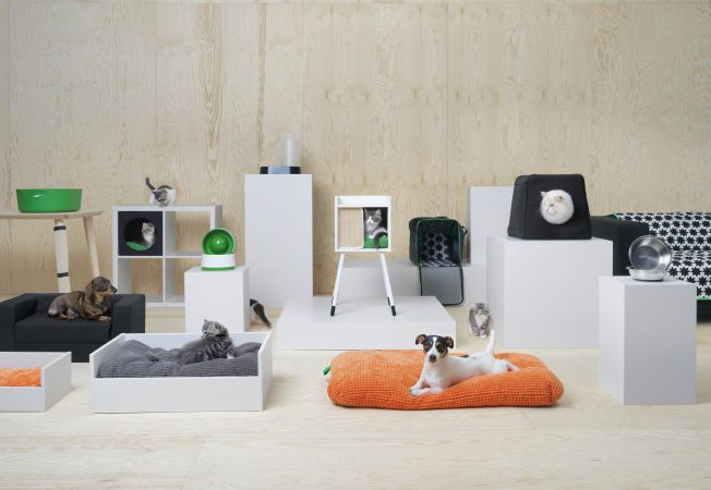 mobilier animale